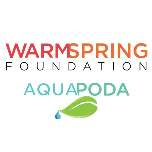 Warm Spring Foundation